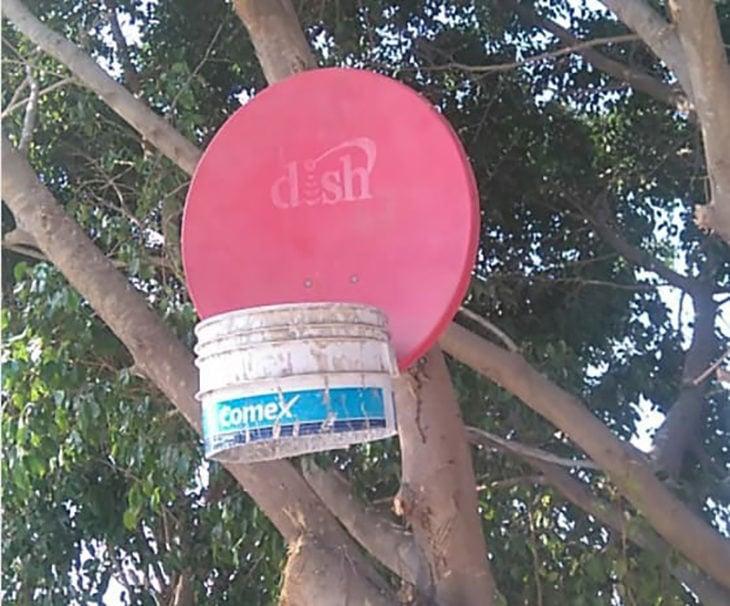 Dish baloncesto canasta television satelital