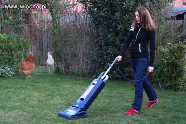 usando la aspiradora para hacer la limpieza del jardín