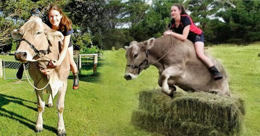 Cover Le dijeron que no le comprarían un caballo