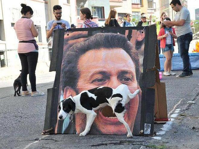 Perro orinando en cartel boca abierta