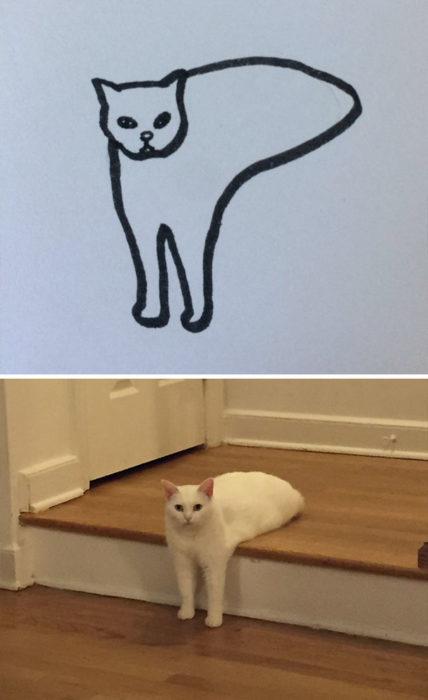 Dibujos realistas gato - en las escaleras