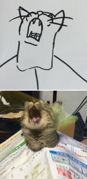 Dibujos realistas gato - aullando