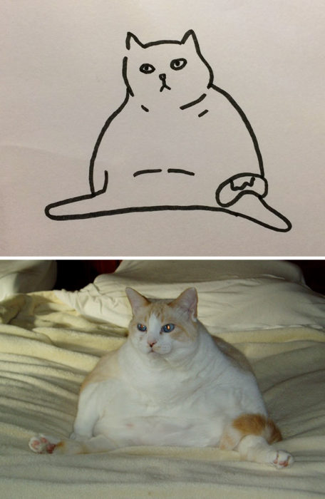 Dibujos realistas gato - sentado