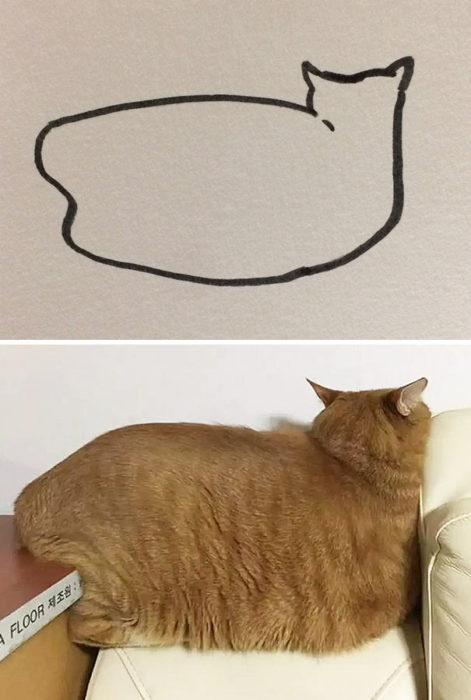 Dibujos realistas gato - de espaldas