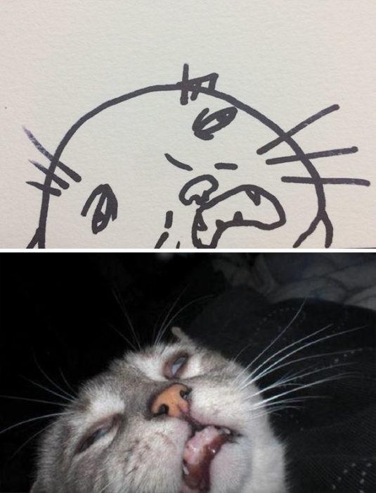 Dibujos realistas gato - parece drogado