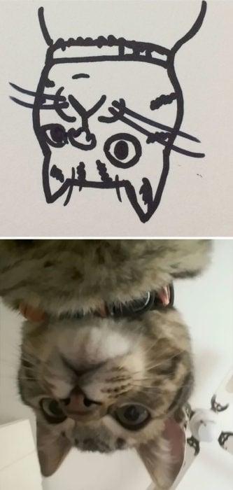 Dibujos realistas gato - de cabeza