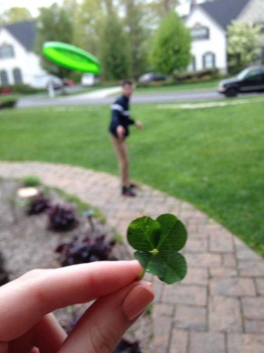 Trebol de 4 hojas mientras lo golpea un frisbee