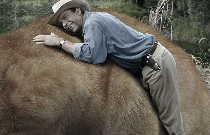 Jurassic park abrazando a gato gigante