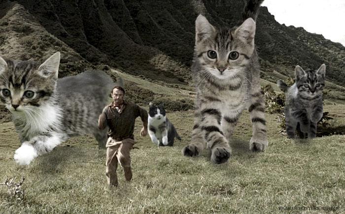 gatos gigantes persiguiendo a humanos