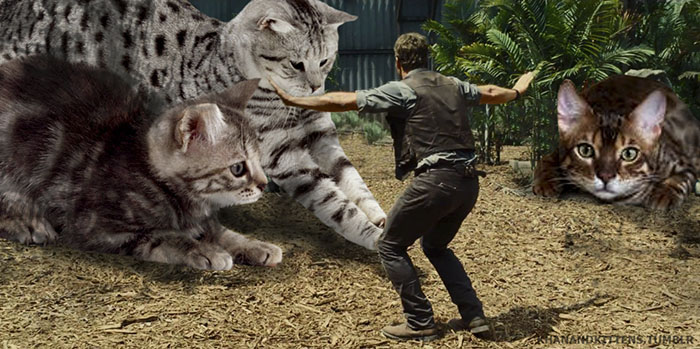escena jurassic world con gatos