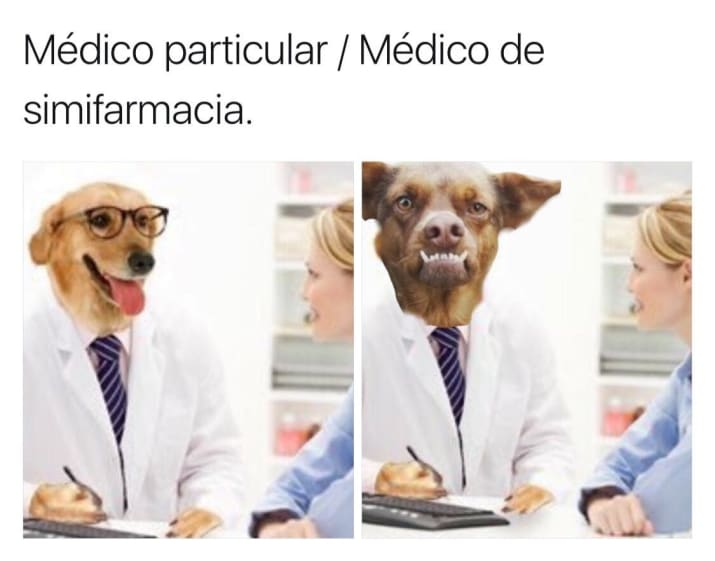 chilaquil memes doctor perro