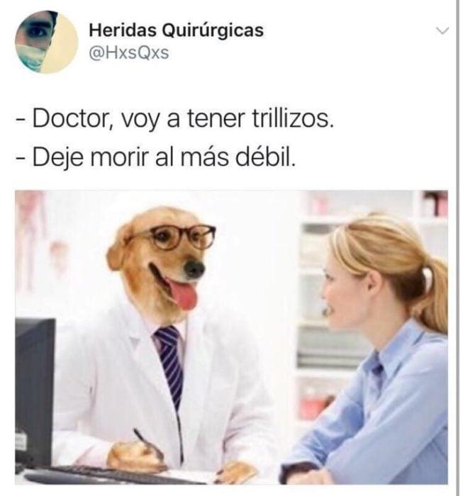 deja morir al más décil memes doctor perro