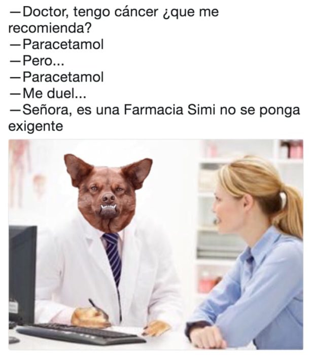 chulaquil paracetamol memes doctor perro