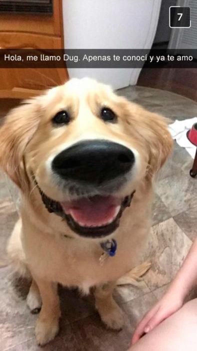 perro filtro snapchat parece dug