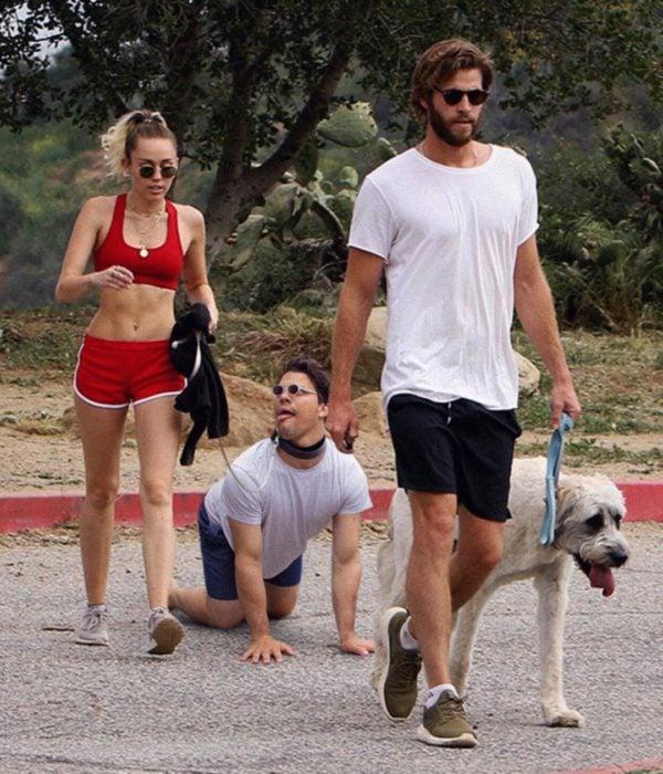 Miley paseo perros
