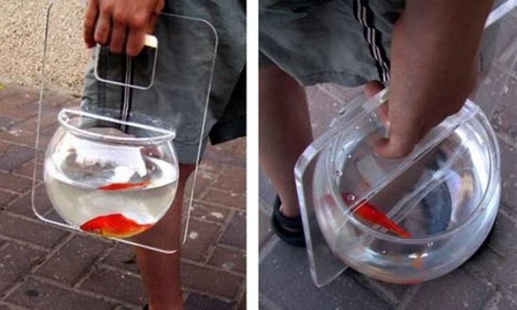 Paseador de peces