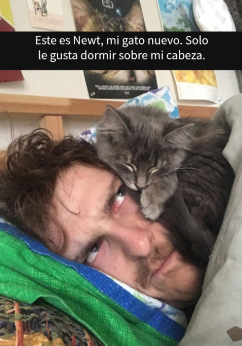 Gato dormido sobre su humano
