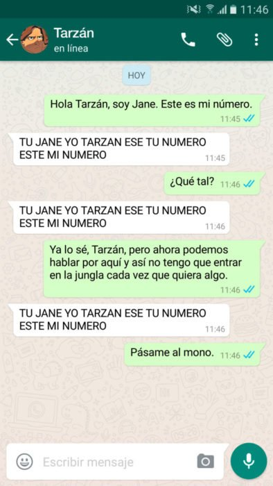 whatsapp tarzan