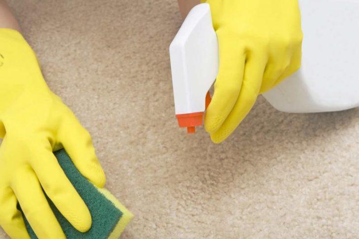 Quita pelos de la alfombra