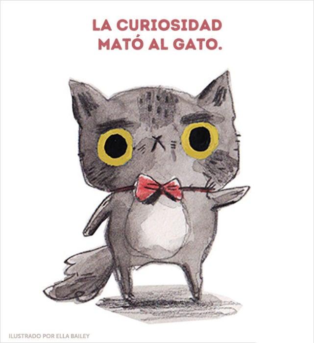 curiosidad gato ilustración dichos
