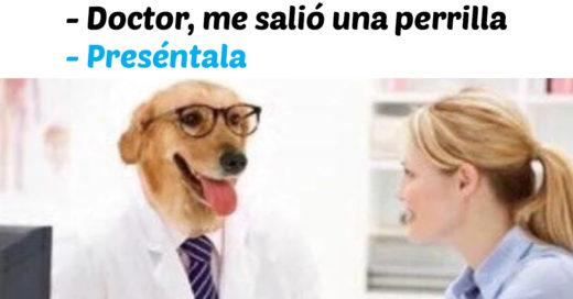Cover 20 memes del 'Doctor Perro' son la cura para todos tus males