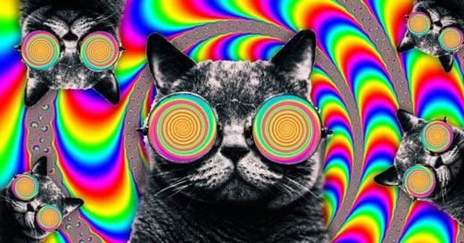 Cover Asombrosas ilusiones ópticas que harán explotar tu cerebro