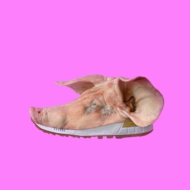 Tenis de cerdo