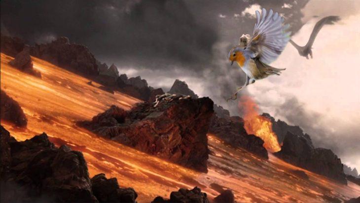 el señor de los anillos pájaro