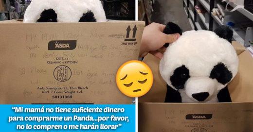 Cover Su mamá no le pudo comprar un panda de peluche y él dejó una conmovedora nota