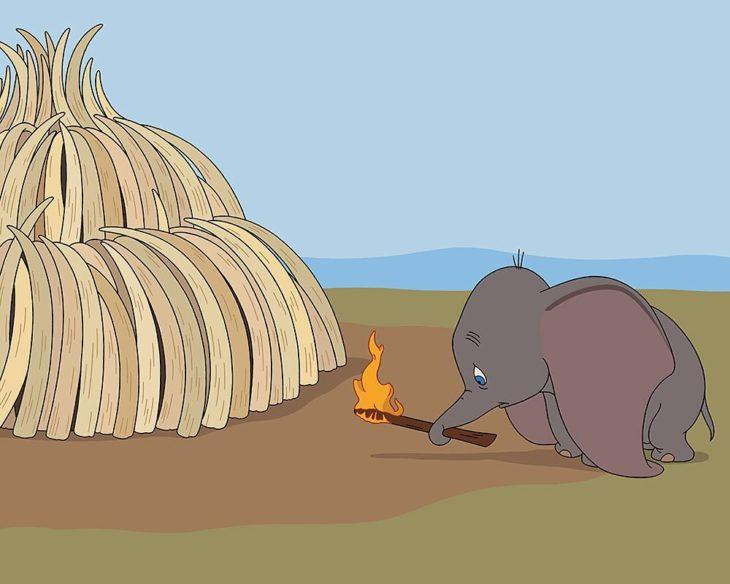 dumbo africa