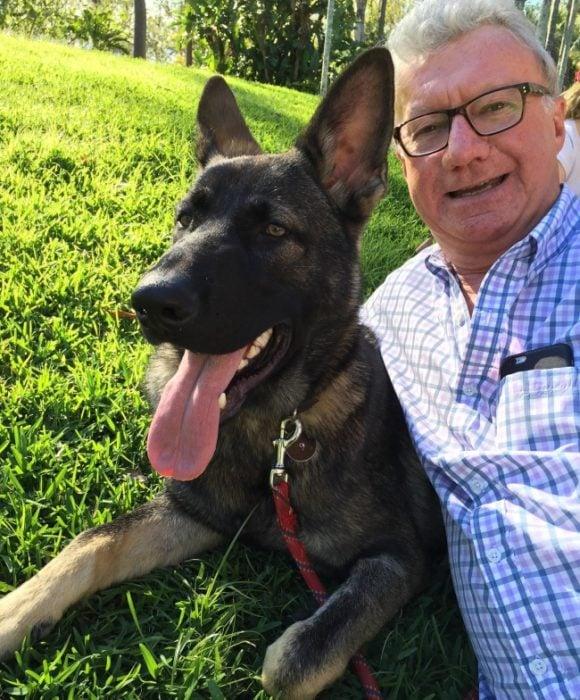 Perro australiano policía con el alcalde