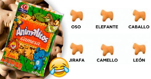 Cover datos salvajes que no conocías de las galletas de animalitos