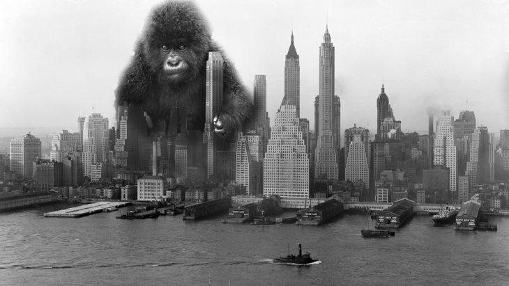 un gorila en la ciudad