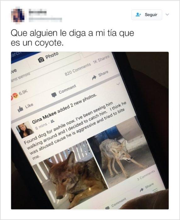 tía rescató a un coyote publicación facebook tuit