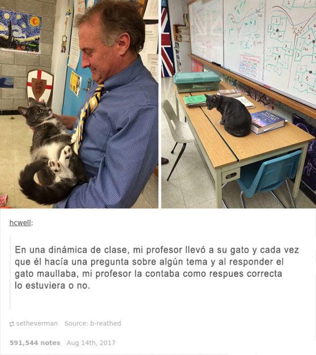 quiero un profesor asi