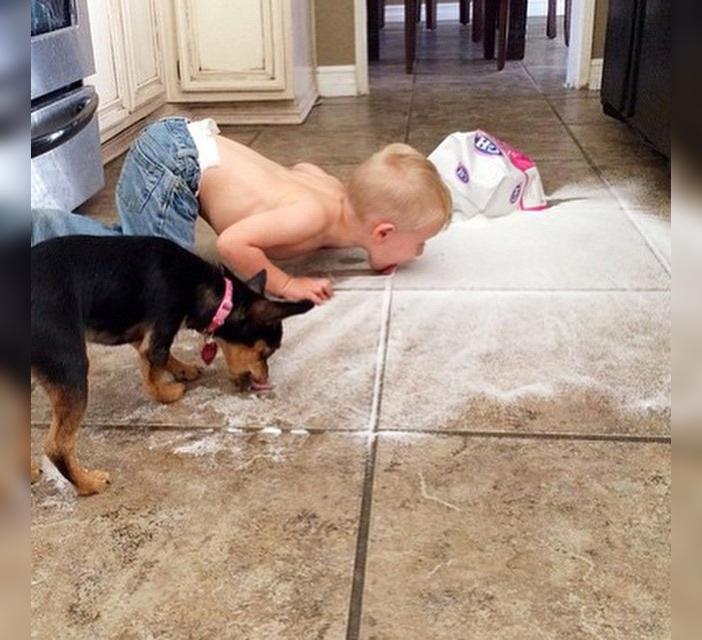 Niño y perro comen del piso