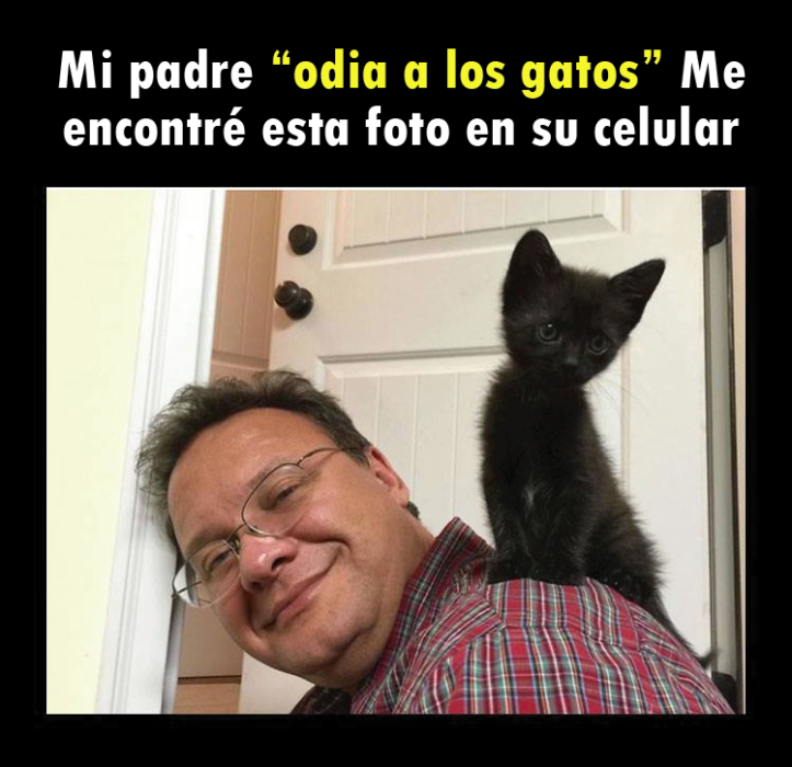 Señor se toma selfie con gatito