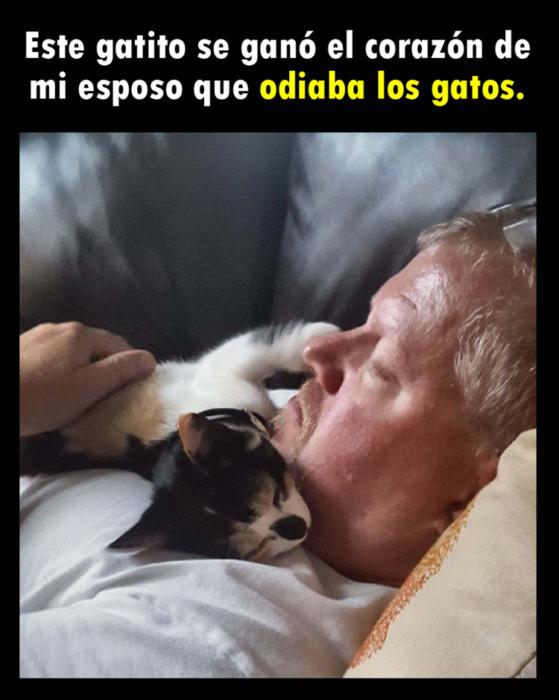 Señor dormido con gato