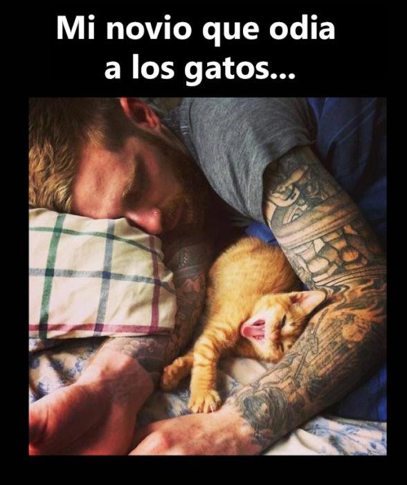 Novio tatuado gatos dormidos