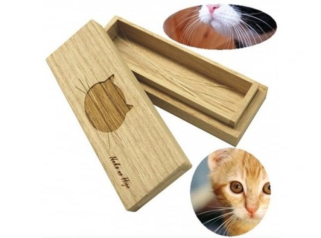 caja bigotes de gato