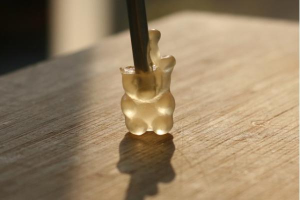 oso de goma cerebro