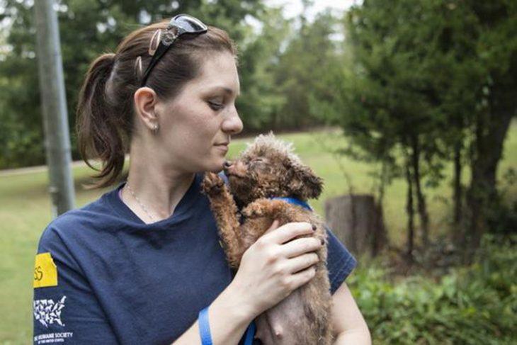 Perrita rescatada recibe amor RecreoViral.com