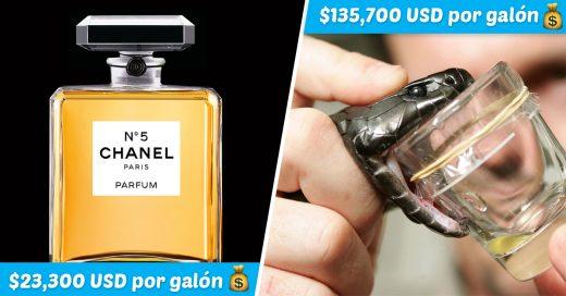 Cover Los 15 líquidos más costosos del mundo