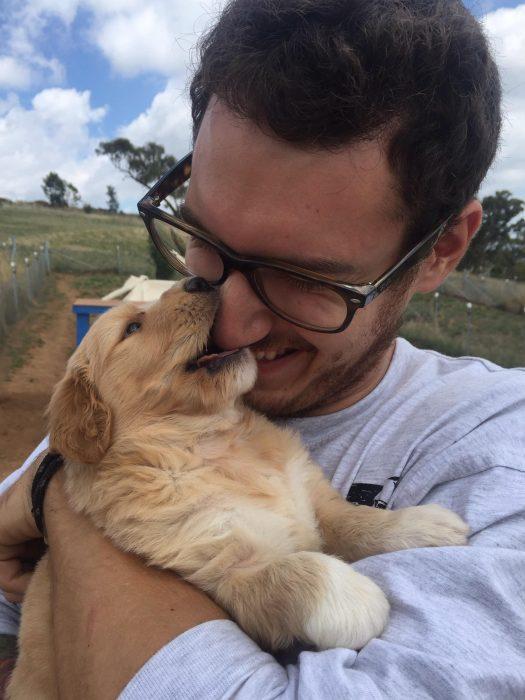 perrito mordiendo nariz