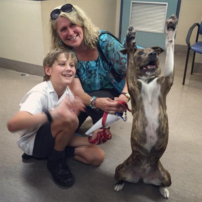 perro levantando las patitas
