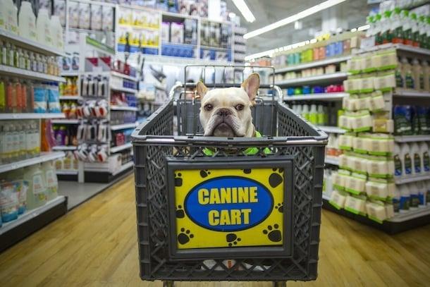 carrito de compras para el perrito