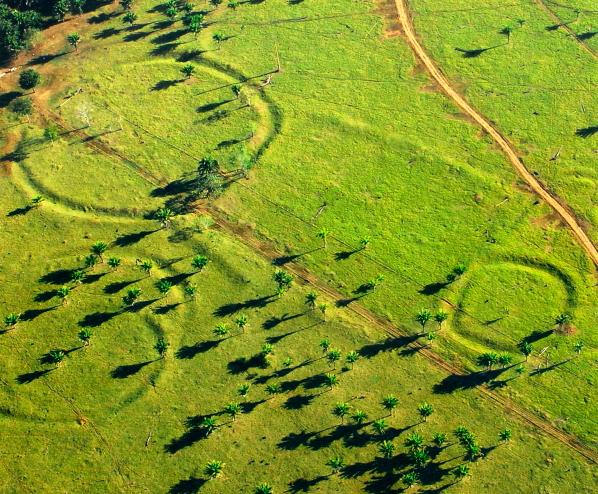 jeroglificos del amazonas