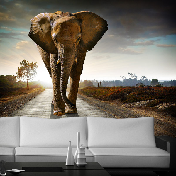 un elefante en la sala