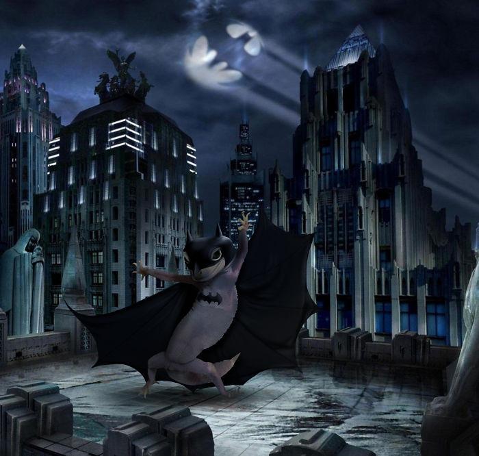El geko de la noche