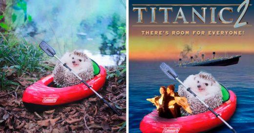 Cover Batalla de Photoshop muestra el lado más salvaje de los erizos